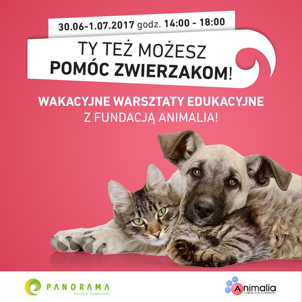 J021 Panorama Warsztaty dla dzieci 2017_1024x1024 WWW Post