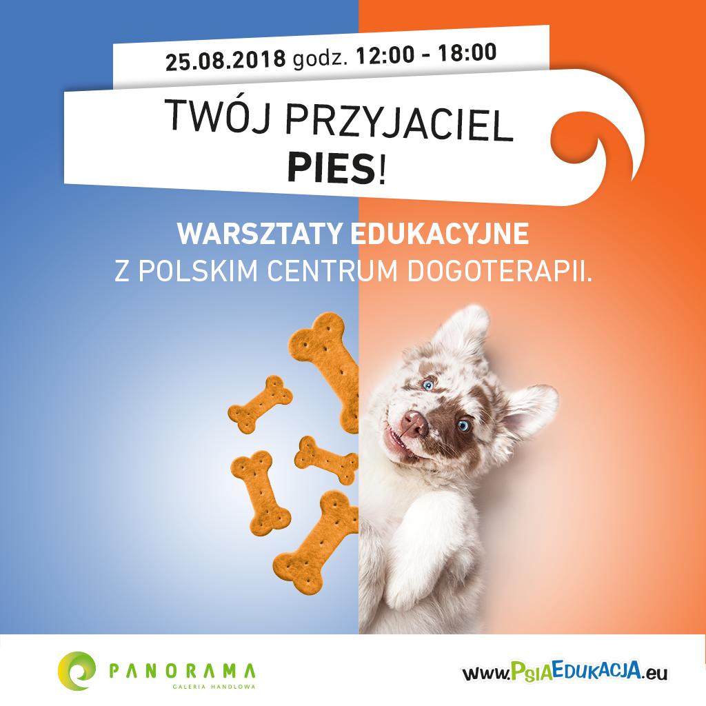 J021 Panorama Psia Edukacja 2018 2018_1024x1024 WWW Post